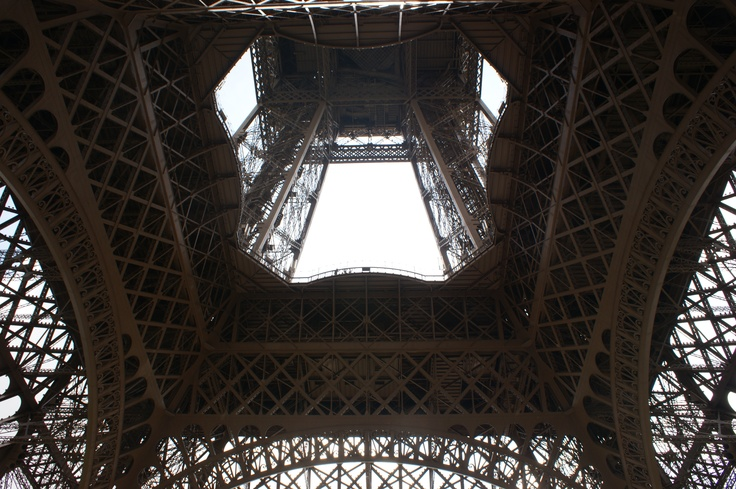 The Eiffel Tower in view of frog 6