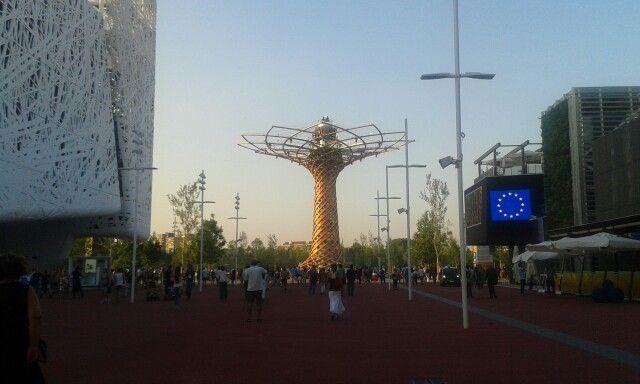 Expo - Cardo e albero della vita #expomilano2015 #expomilano #expomi #Expo2015