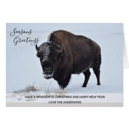 Wild Buffalo Bison Christmas Winter Snow Custom Card - Xmascards ChristmasEve Christmas Eve Christmas merry xmas family holy kids gifts holidays Santa cards