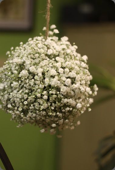 Well, after our little exchange yesterday about fillers, I just had to write a post about my least favorite filler…Baby's Breath. Definitely...