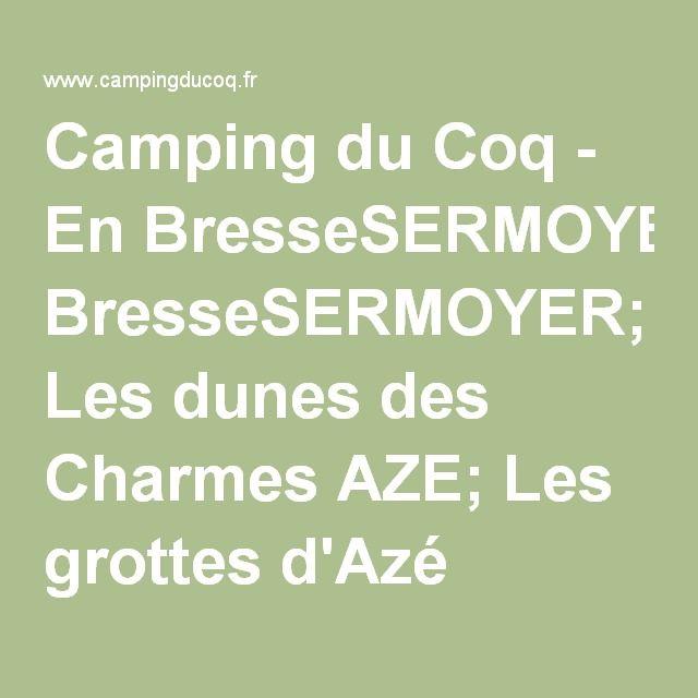 Camping du Coq - En BresseSERMOYER; Les dunes des Charmes AZE; Les grottes d'Azé MONTREVEL EN BRESSE; La ferme du Sougey CUISERY: Centre Eden SAINT ETIENNE DU BOIS : Accrobranche Vignobles de Viré et du Mâconnais