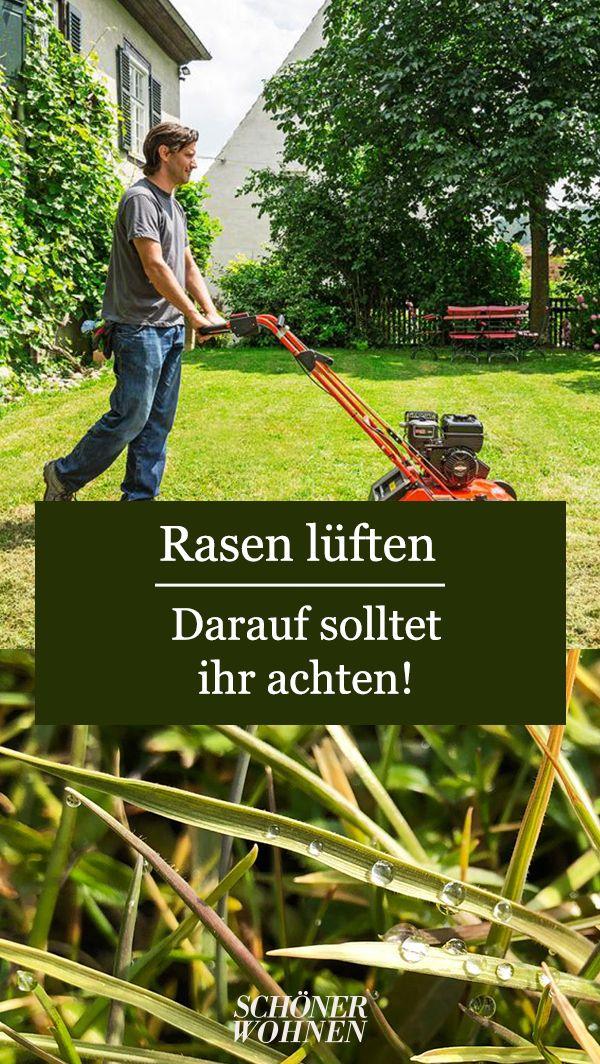 Rasen Vertikutieren Wann Ist Der Richtige Zeitpunkt Rasen Garten Und Rasen Vertikutieren