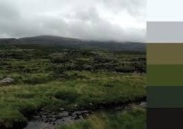 Turfprojects.ie Irish Landscape Colour Palettes Torc Kerry Design Inspiration