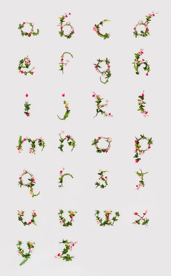 1000 images about tipografia on pinterest drop cap jessica hische