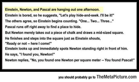 Einstein, Newton And Pascal Are Hanging Out One Afternoon