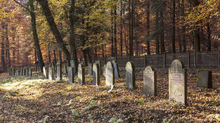 Green Funerals - They're different, more eco-friendly, and frequently cheaper. Deathcare industry experts say demand is on the rise.
