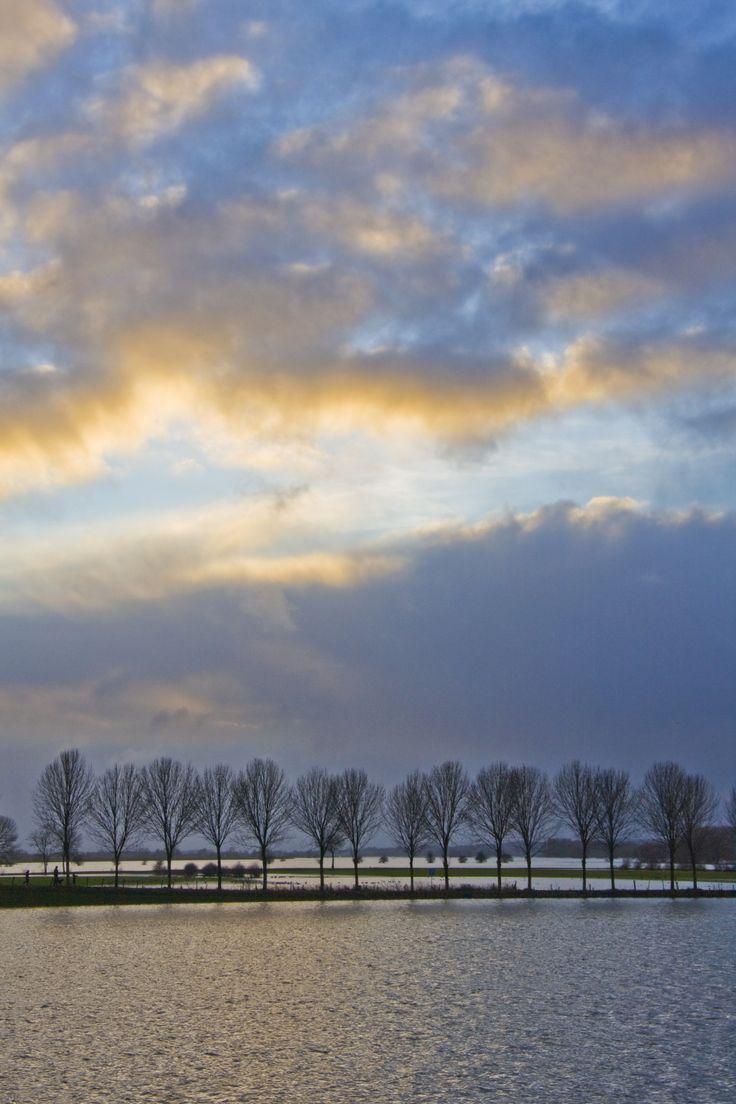 Hoge waterstand van de IJssel bij Bronkhorst gemaakt door Marieke Rouwenhorst