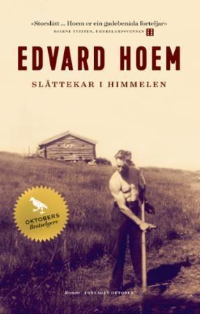 Slåttekar i himmelen: roman