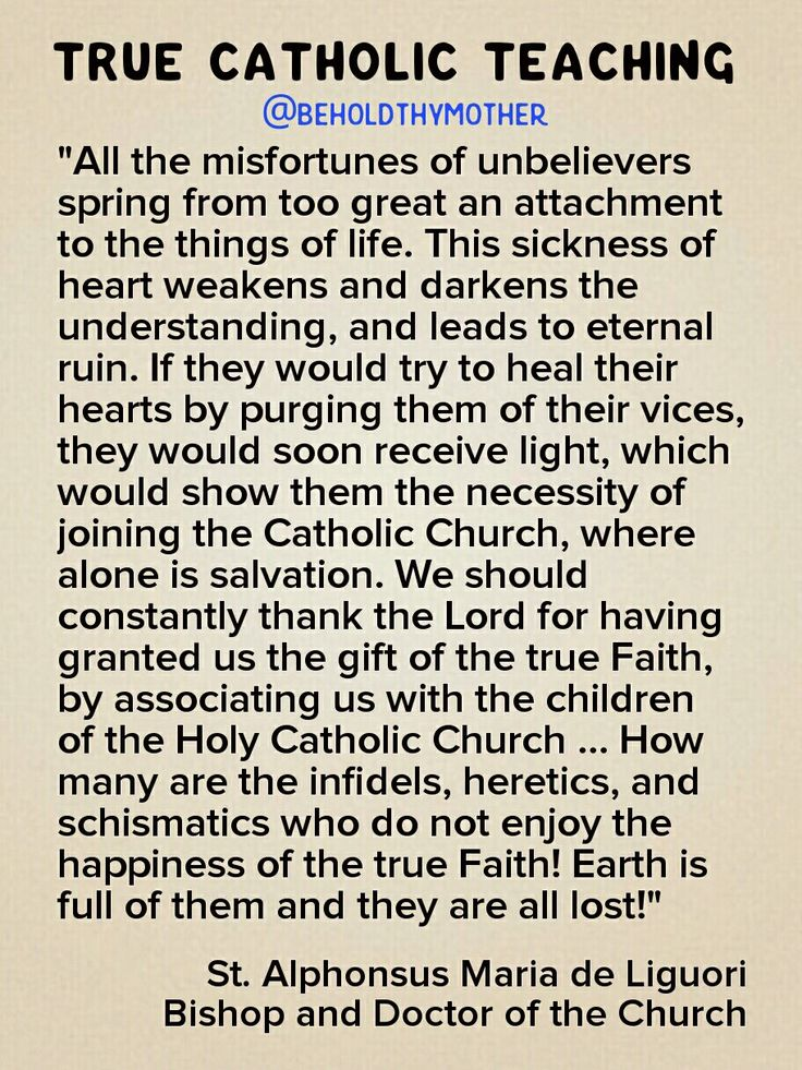 "Against the error of the real reason there's hatred and destruction in the world, St. Alphonsus Liguori teaches: ""All the misfortunes of unbelievers spring from to great an attachment to the things of life."""