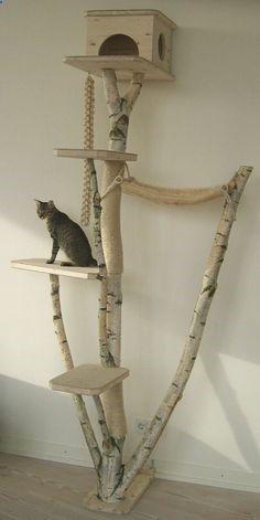 Cats Toys Ideas - enfin un arbre à chat qui embellit le salon !!! www.kratzbaum-cit... - Ideal toys for small cats