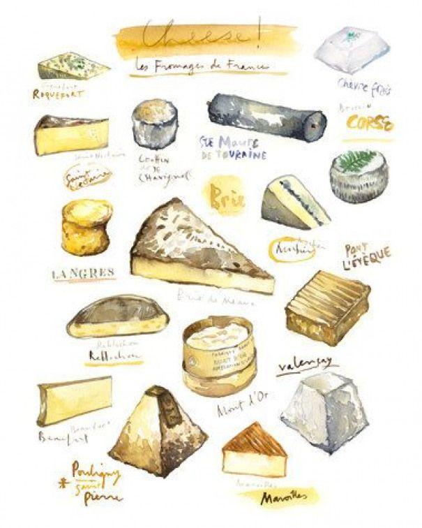 Les Fromages Francais Affiche Cuisine Aquarelle Illustration A4