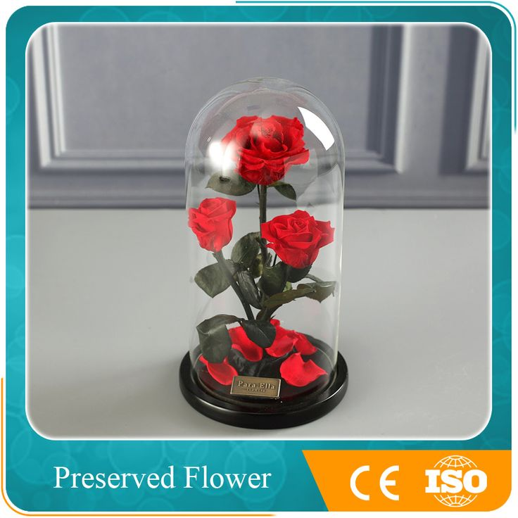 Artificial Preserved Natural Rose Flower In Glass Dome As Ladies Gift Items , Find Complete Details about Artificial Preserved Natural Rose Flower In Glass Dome As Ladies Gift Items,Preserved Flower,Wholesales Preserved Flower from -Beijing Sweetie-Gifts Co., Ltd. Supplier or Manufacturer on Alibaba.com