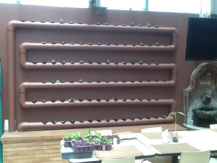 Sistema Hidropónico NFT en cocina/comedor Corporativo CJ. Green-Arq, Tijuana, B.C.
