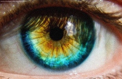 Blue on the outside, green in middle, brown around pupil
