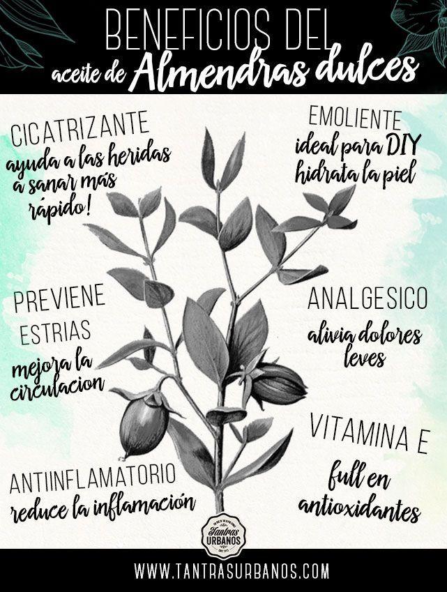 El aceite de almendras dulces y sus beneficios para la salud. #aceitesesenciales #almendras #infografia