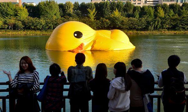 El gran pato amarillo inflable se desinfló en Seúl.