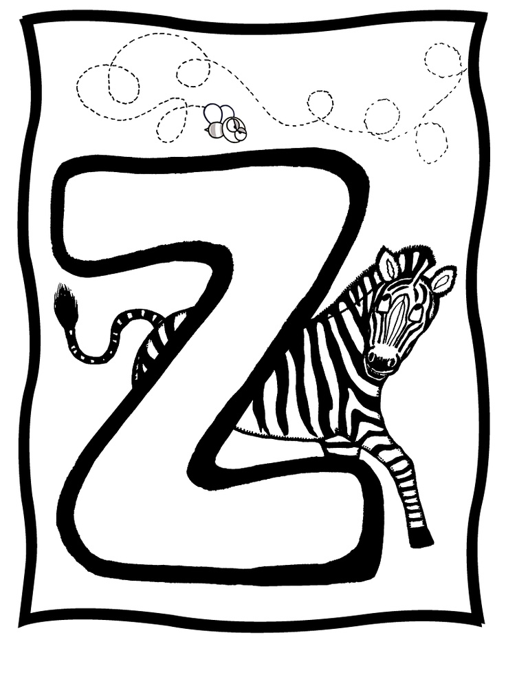 1000 images about PRE K quot Z quot on Pinterest Zoo animals