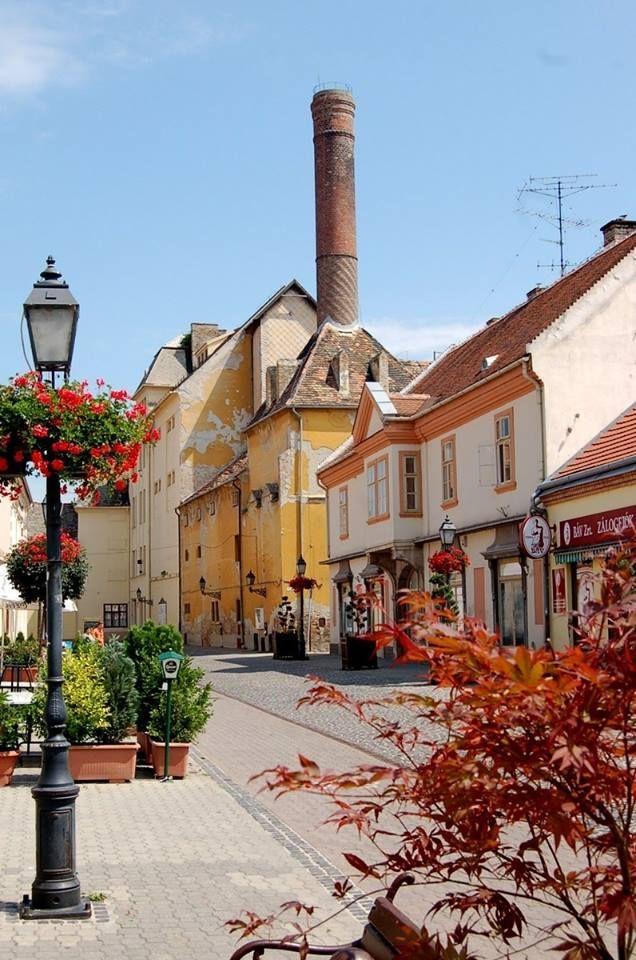 Mosonmagyaróvár, sétáló utca (Magyar utca)