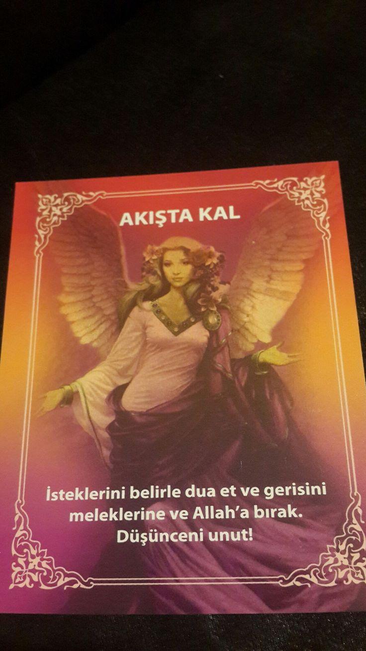 melek kartlari günün mesajı
