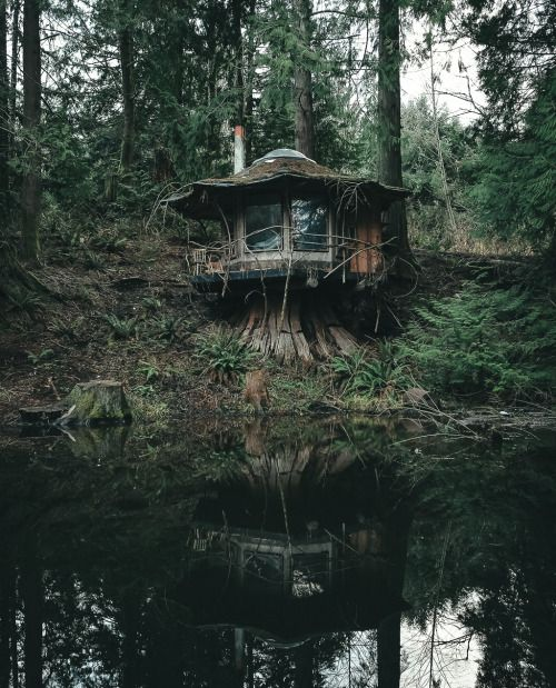 The Stump Cabin in the Pacific North West