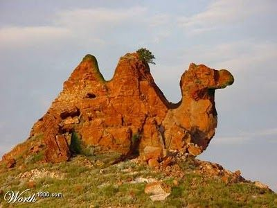 ROCK FORMATION THAT LOOKS LIKE A CAMEL