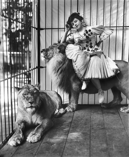 Mademoiselle Scheel with Lions (circus), circa 1905. photo by Frederick W. Glasier