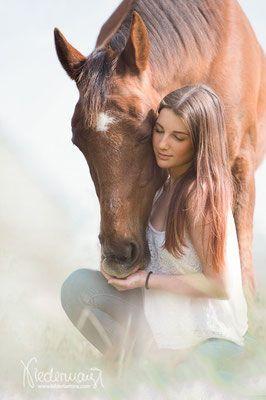 Frühling/Sommer – Pferdefotografie, Hundefotografie, Fotografie Bettina Niedermayr Pferde – Mensch & Pferd – Hunde- Portrait – Stallschilder – Kalend