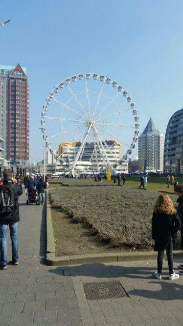 Rotterdam - Reuzenrad naast Markthal, 2016