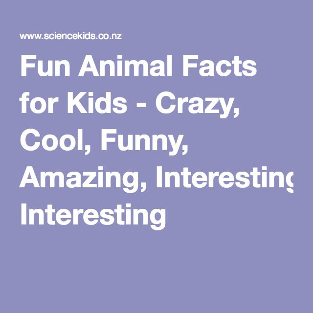 Fun Animal Facts for Kids - Crazy, Cool, Funny, Amazing, Interesting