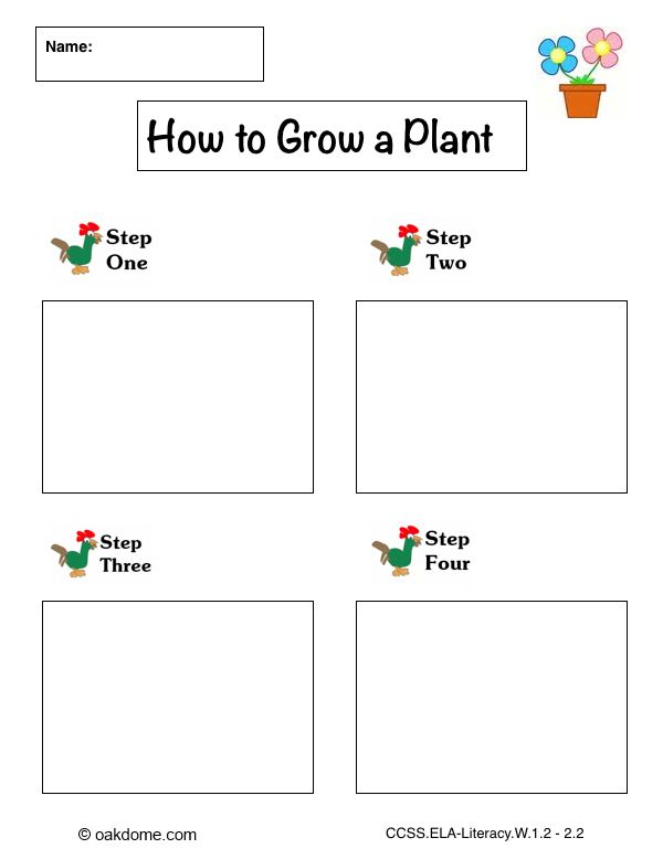 71 best Graphic Organizers images on Pinterest Teaching ideas - common core lesson plan template