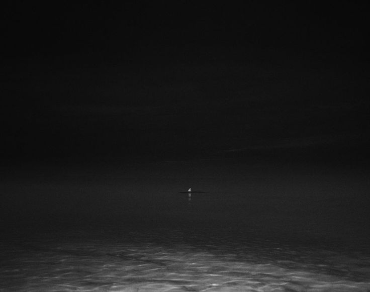 https://www.hugomichellgallery.com/wp-content/uploads/2015/03/Trent_Parke_Fin-West-Beach-Adelaide-2010.jpg