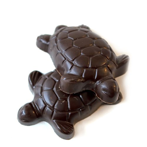 The turtle shape offers a whimsical play on the traditional chocolate turtle…