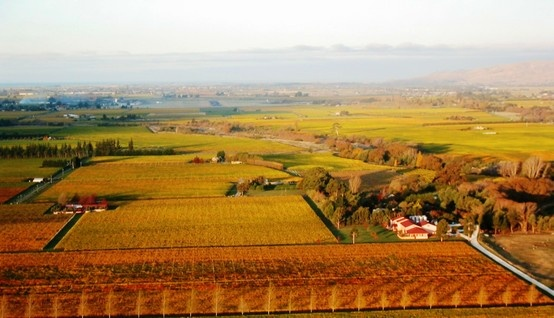Isabel Vineyard birds eye view. Located in the Southern Valleys of Marlborough New Zealand.
