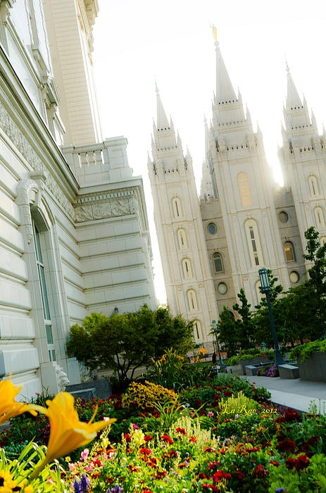 SLC, Utah LDS, (Mormon) Temple at a tilt.  Love this one when I saw it.   The Church of Jesus Christ of Latter Day Saints builds these temples all around the world where families are sealed for time and all eternity. This is the most famous of all the temples and millions of tourists come through Temple Square from all over the world throughout the year to see this unique architecture built by a fast growing religion.
