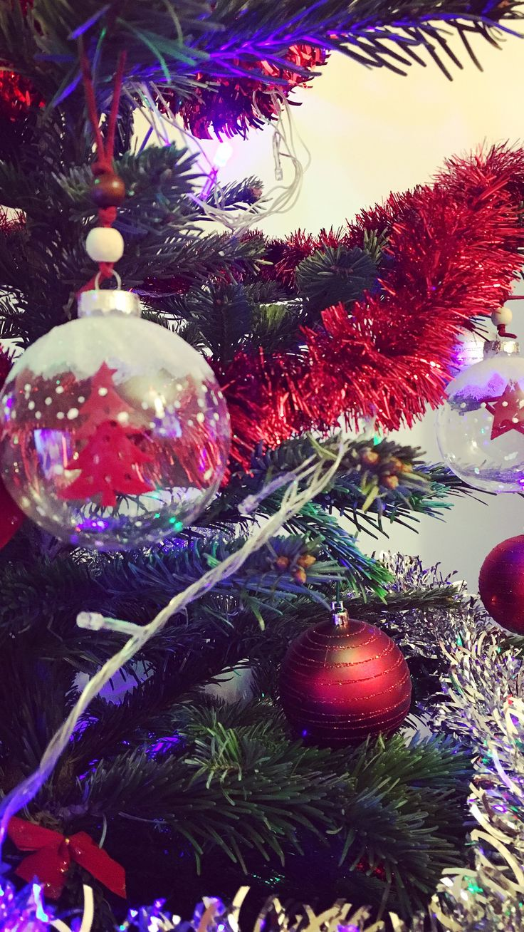 •Christmas spirit•
