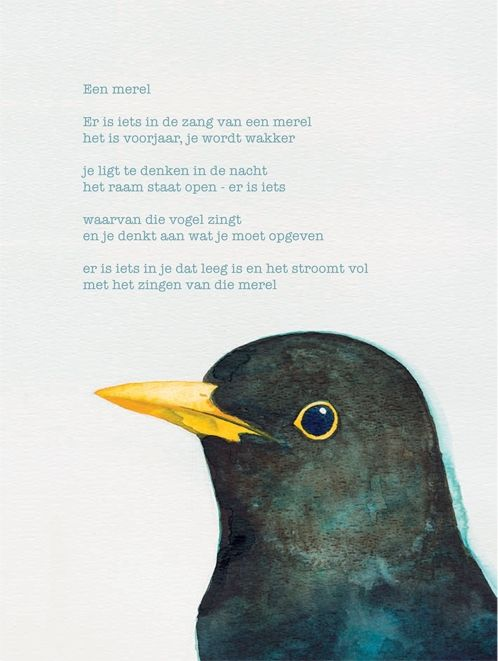 Op de post - poëziekaarten per stuk - poëziekaart met gedicht 'Een merel ' van Rutger Kopland - Plint