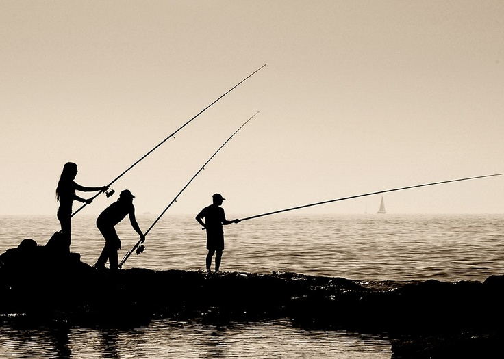68 best california surf fishing images on pinterest for Surf fishing gulf shores