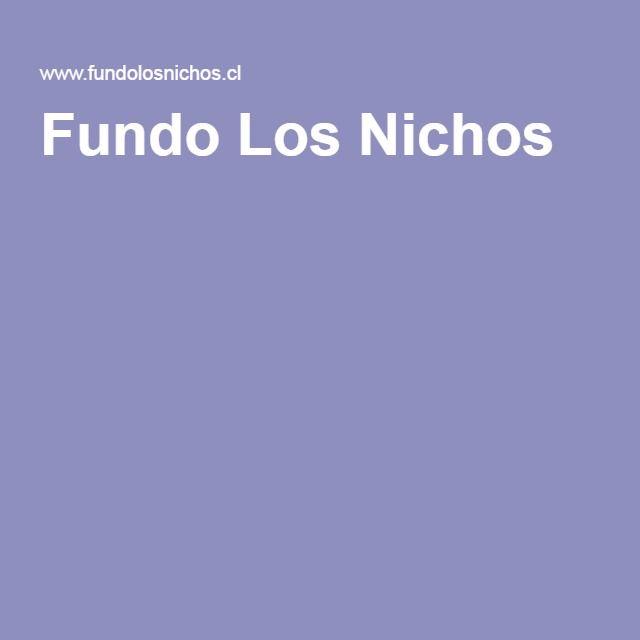 Fundo Los Nichos, Pisco Elqui. Dirección: D-485, Pisco Elqui, Chile Teléfono: 51451085