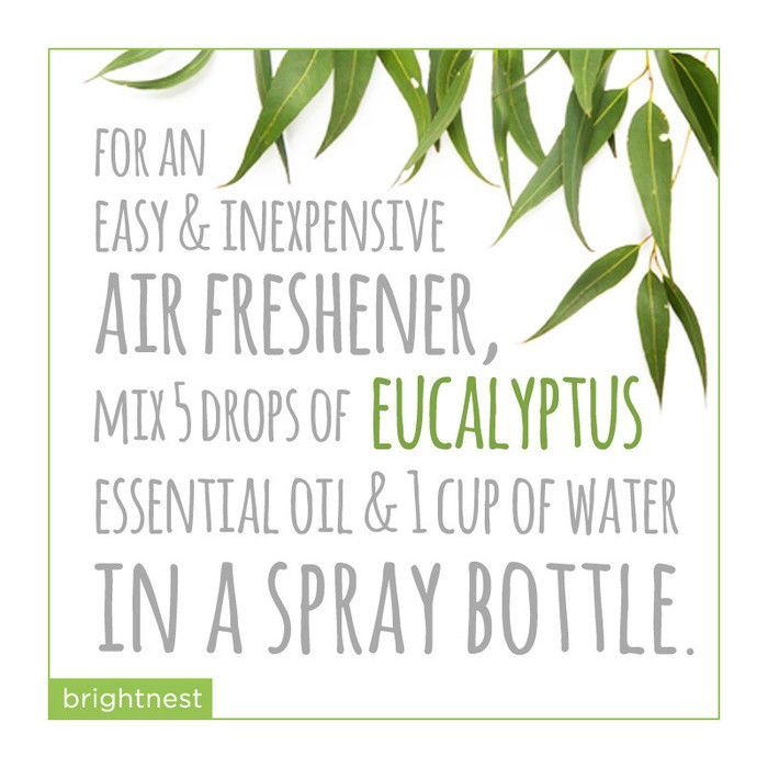 An easy & inexpensive air freshener idea for the home.