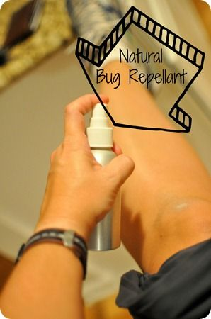 Homemade Natural Bug Repellent Spray