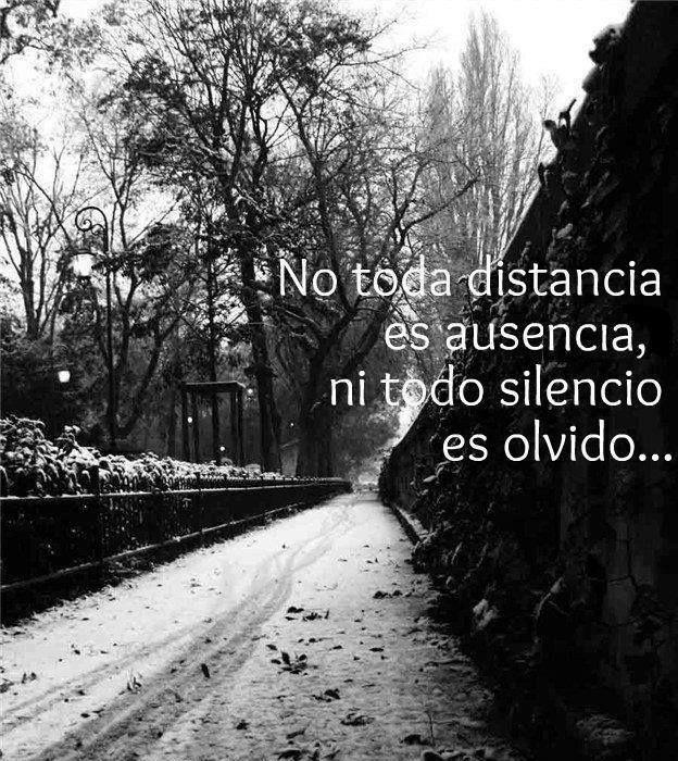Distancia, ausencia, silencio, olvido...