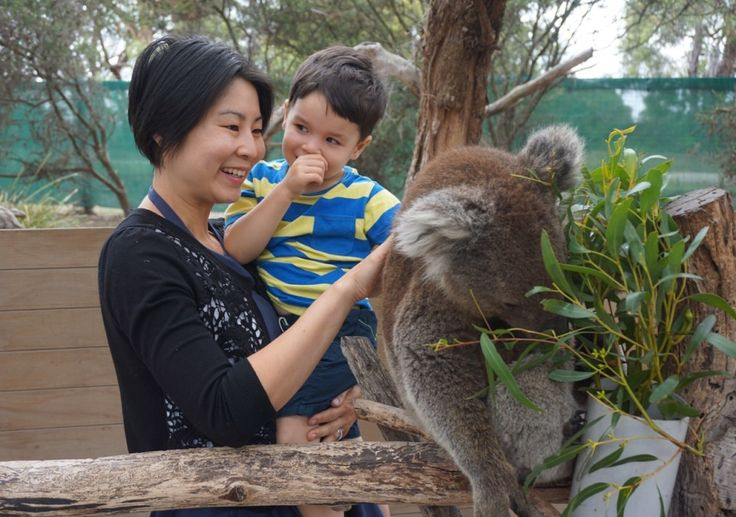 HOT: Moonlit Sanctuary Wildlife Conservation Park, 550 Tyabb-Tooradin Rd, Pearcedale, Mornington Peninsula http://tothotornot.com/2016/03/hot-moonlit-sanctuary-wildlife-conservation-park-tyabb-tooradin-pearcedale-mornington-peninsula/