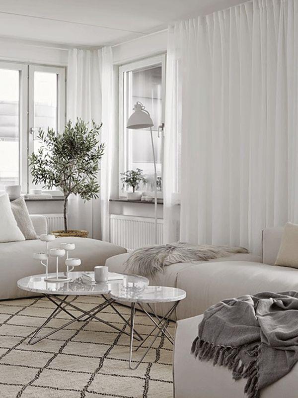all white living room an a lovely olive tree - Hitta hem