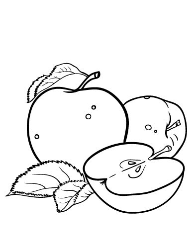 Printable apple coloring page. Free PDF download at http://coloringcafe.com/coloring-pages/apple/.