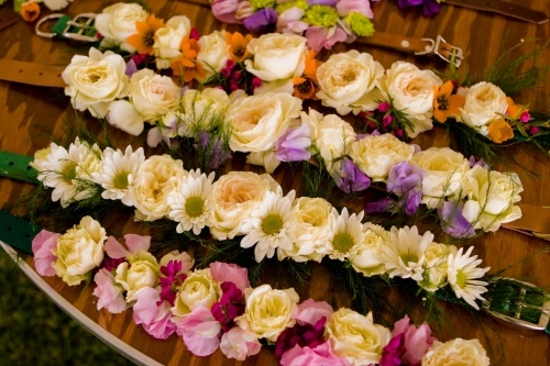 Flowered Dog collars