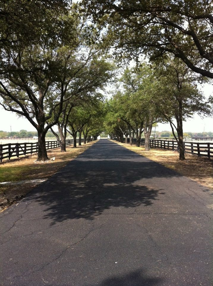 Southfork Ranch's main drive