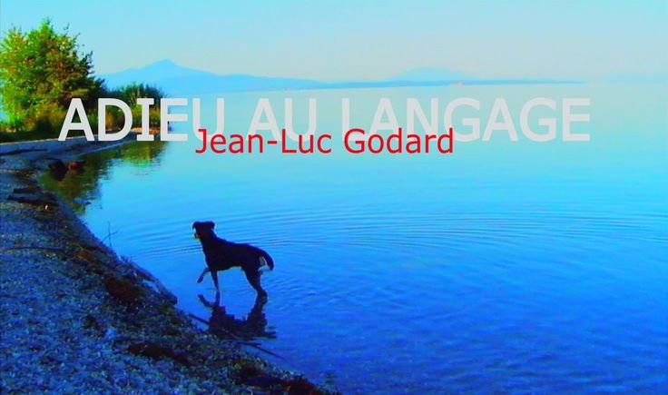 Adieu au Langage - Jean-Luc Godard - dit wordt wellicht de eerste film van 2015.