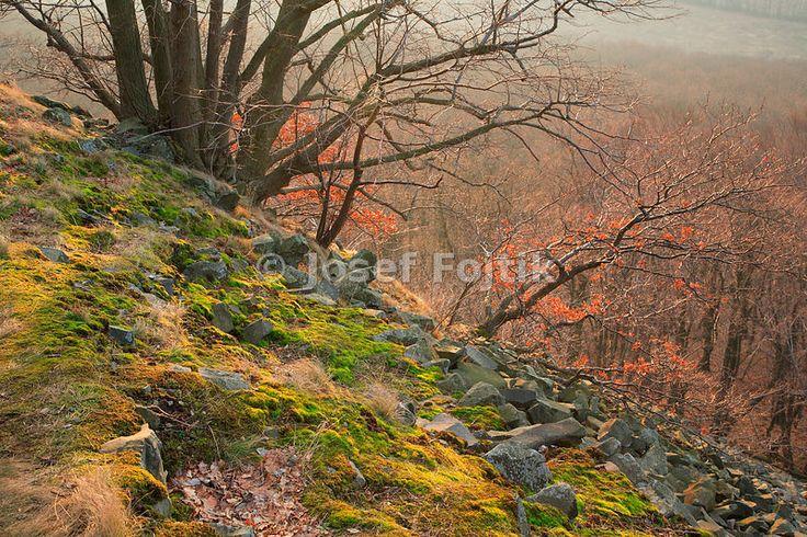 Ostry Hill, Ceske stredohori Mountains, Czech Repubic