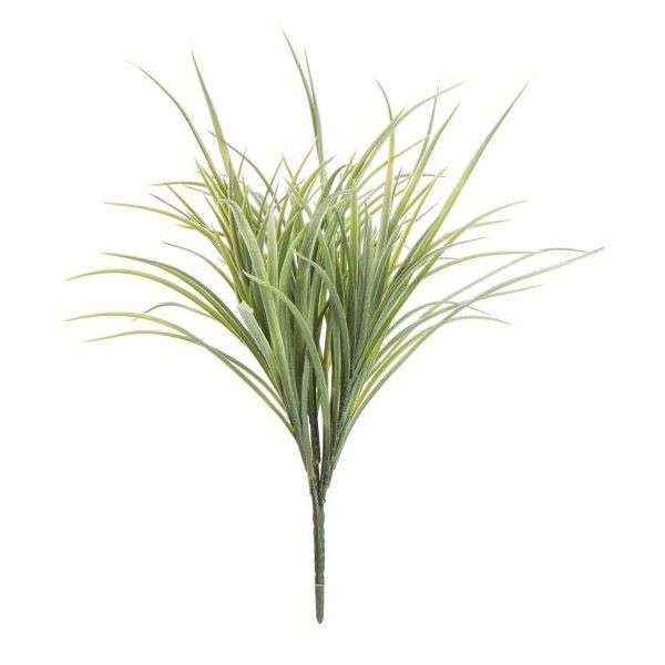 Busk Gress