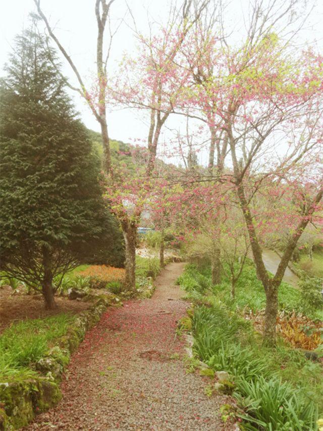 Twee: Jardim encantado